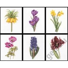 Набор для вышивания Шесть цветочных исследований канва лён 36 ct
