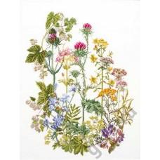 Набор для вышивания Травы, канва аида 18 ct