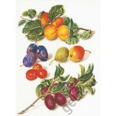 Набор для вышивания Персики & Сливы, канва лён 36 ct