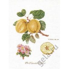 Набор для вышивания Ветка яблони, канва лён 36 ct