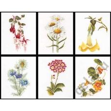 Набор для вышивания Шесть цветочных исследований, канва лён