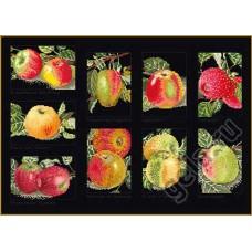 Набор для вышивания Яблоки, канва аида (черная)