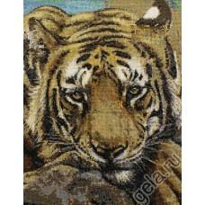 Набор для вышивания Сибирский тигр