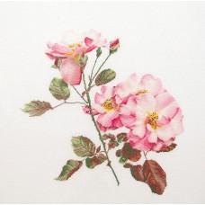 Набор для вышивания Роза Лирсум, канва лён 36 ct