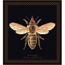Набор для вышивания Пчела, канва аида (черная) 18 ct