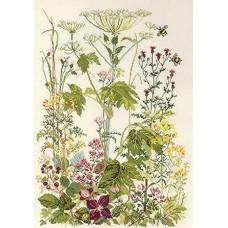 Набор для вышивания Цветы на обочине