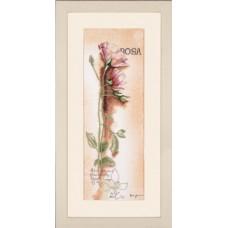Набор для вышивания Rosa - Botanical  LANARTE (арт.34926)