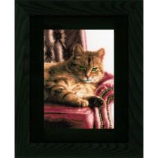 Набор для вышивания Relaxed Tabby  LANARTE