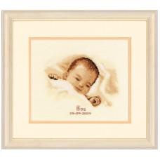 Набор для вышивания Спящее сокровище 2002/45087