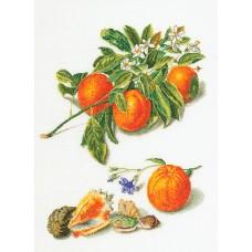 Набор для вышивания Апельсины и мандарины, канва лён 36 ct