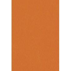 Бумага универсального назначения  Color Multi Purpose Card