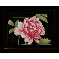 Набор для вышивания Pink rose  LANARTE