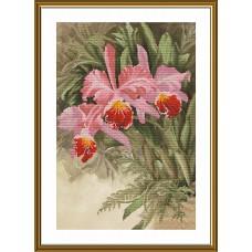 Набор для вышивания мулине НОВА СЛОБОДА СВ2239 Тропическая орхидея 32,8х48,4 см
