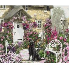Набор Колор Кит картина по номерам КК.GX34333 Любопытная собака 40х50