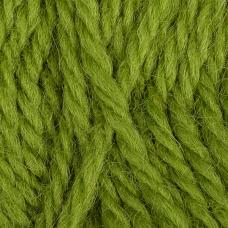 Пряжа для вязания КАМТ Аргентинская шерсть (100% импортная п/т шерсть) 10х100г/200м цв.130 липа