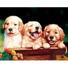 Набор Цветной для изготовления картины со стразами LGP011 Забавные щенки 40х50