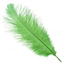 Перо страуса S-300-4 30-35 см цв.зеленый
