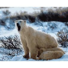Картины по номерам Цветной MG6085 Медведица с медвежатами 40х50 см