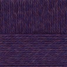 Пряжа для вязания ПЕХ Сувенирная (50% шерсть, 50% акрил) 5х200г/160м цв.1052 сине-розовый