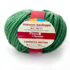 Пряжа для вязания ТРО Меринос Канберра (50% мериносовая шерсть, 50% акрил) 5х100г/50м цв.0112 зеленый
