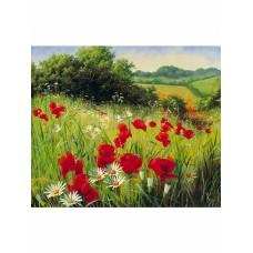 Картины по номерам Molly KH0972 Луговые цветы 40х50 см