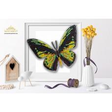 Пластиковая перфорированная основа БЛАГОВЕСТ БС-114 3-D Бабочка. Ornithoptera Goliathus 10х12 см