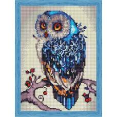 Алмазная вышивка Необыкновенная сова QS200151 30х40 тм Цветной