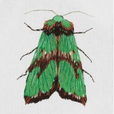 Набор для вышивания PANNA Живая картина  ЖК-2179 Зеленый мотылек 5,5х6,5 см