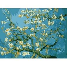 Картины по номерам Цветы миндаля EX5216 30х40 тм Цветной