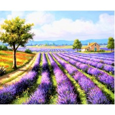 Картины по номерам Molly KH0970 Лавандовое поле 40х50 см