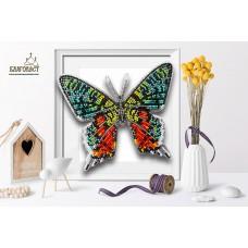 Пластиковая перфорированная основа БЛАГОВЕСТ БС-100 3-D бабочка. Chrysiridia Madagascarensi