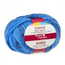 Пряжа для вязания ТРО Азалия (40% шерсть, 60% акрил) 10х100г/270м цв.5010 мулине