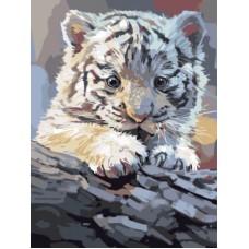 Картины по номерам Бенгальский тигренок на бревне EX5762 30х40 тм Цветной