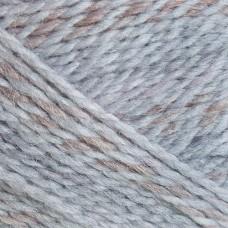 Пряжа для вязания ПЕХ Радужный стиль (30% шерсть, 70% ПАН) 5х100г/200м цв.1012 мулине коричневый/серый