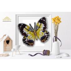 Пластиковая перфорированная основа БЛАГОВЕСТ БС-043 3-D Бабочка. Рapilio Euchenor 10х12 см
