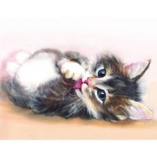Набор Цветной для изготовления картины со стразами LG011 Милый котенок 40х50
